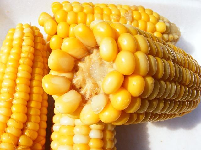 brancatos express corn
